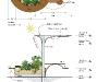 planter-layout-mac.indd