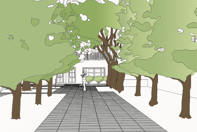 05-courtyd-trees